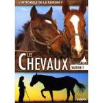 Chevaux (Les) - Saison 1