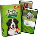 Défi nature : chiens